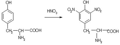 Ксантопротеиновые соединения белков