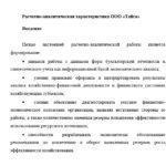 Расчетно-аналитическая характеристика ООО Тайга